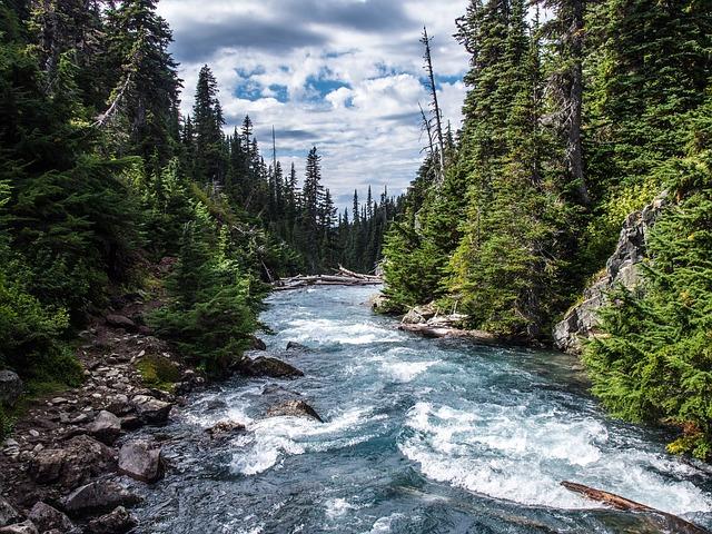 rivers-272352_640